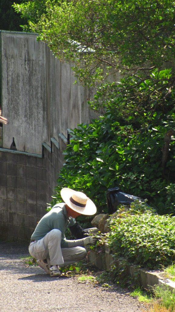 Ogrodnik, Japonia