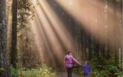 Ruch, rodzicielstwo iemocje
